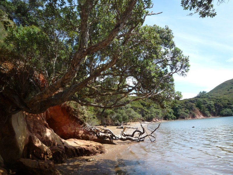 Onerua Bay