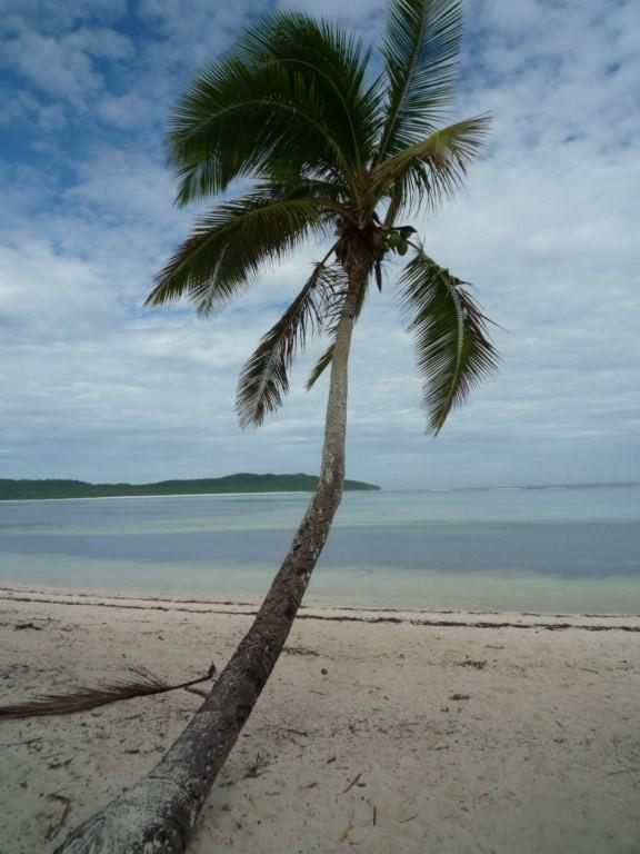El patio del colegio incluye esta parte de playa donde los niños pueden jugar a diario