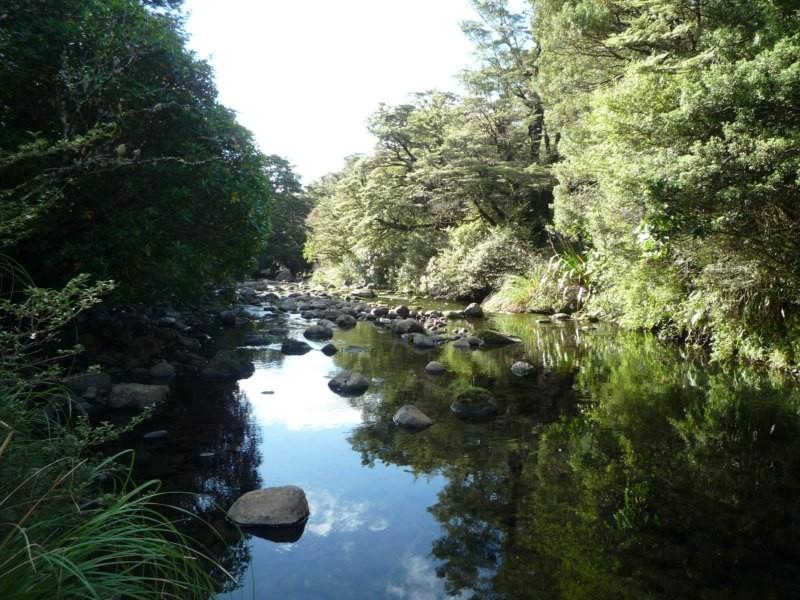 Rio del camping Mangahuia, en Tongariro National Park