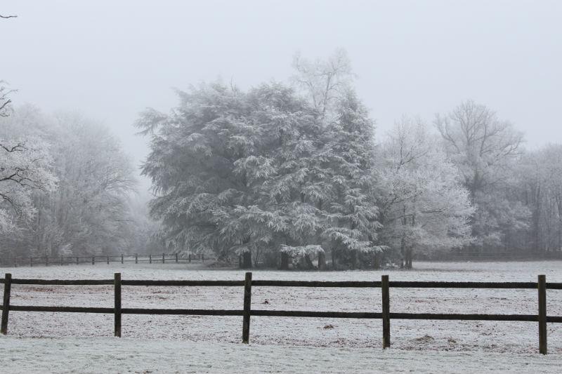 la campagne en hiver - Gîte