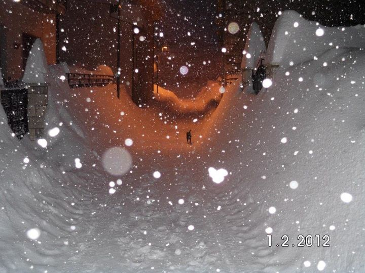 Foto di Paola Imperatore 03/02/2012