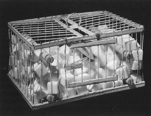 マルセル・デュシャン「ローズセラヴィ、何故くしゃみをしない?」(1921年)
