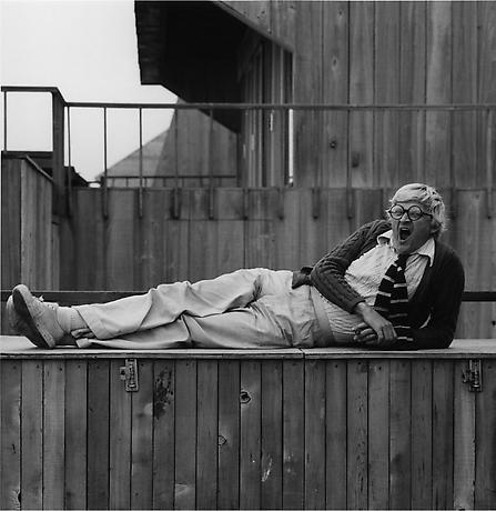 《デビッド・ホックニー》1976年