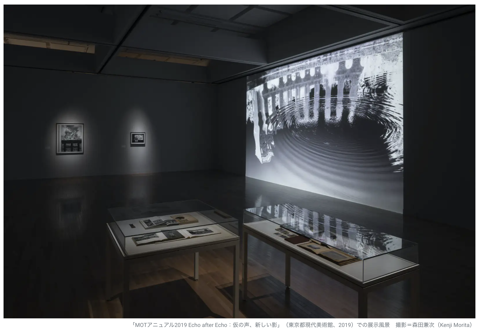 【美術解説】三宅砂織「フォトグラムを使って多様な表現を行う現代美術家」