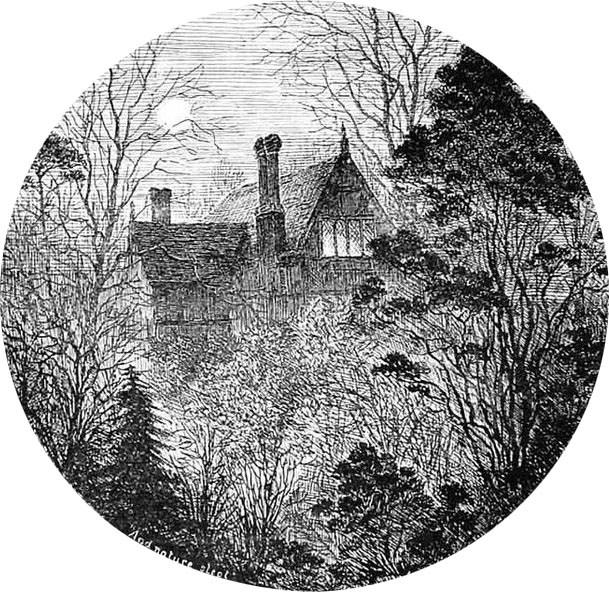 『イラストレイテド・スポーティング・アンド・ドラマティックニュース』でのルイス・ウェインのイラスト(1884年)。