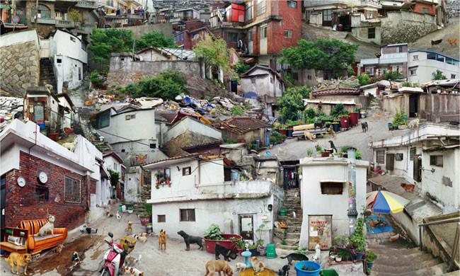 ウォン・ソンウォン「Tomorrow- Village of dogs」