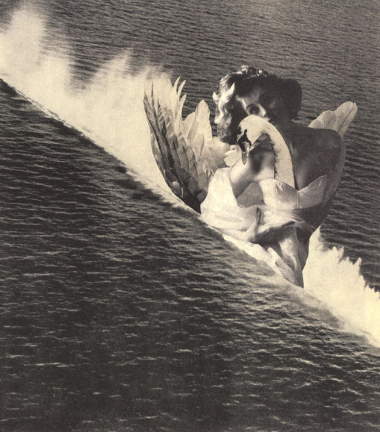 「海のレダ」の画像検索結果