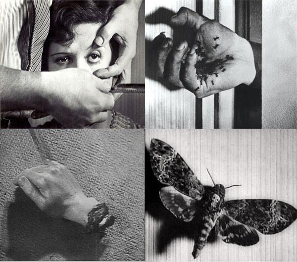 目玉、手首、蟻など「アンダルシアの犬」にはさまざまなシンボルが断片的に現れる。