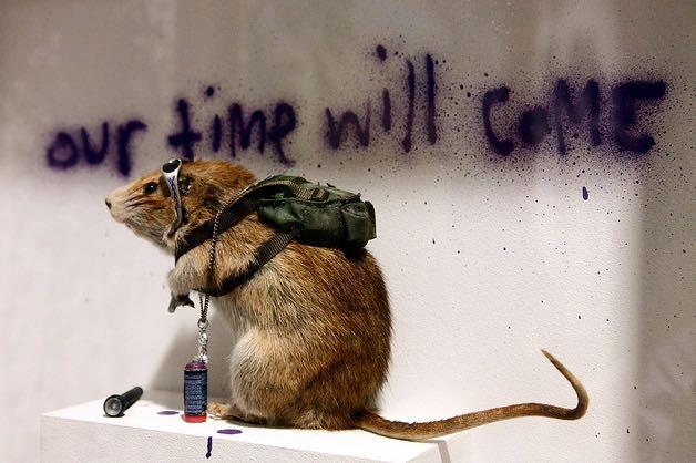 ※7:ロンドン自然博物館に設置されたガラス張りの箱に入れられたネズミ。