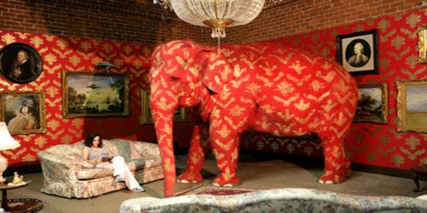 ※6:全身ペインティングされたインド象。