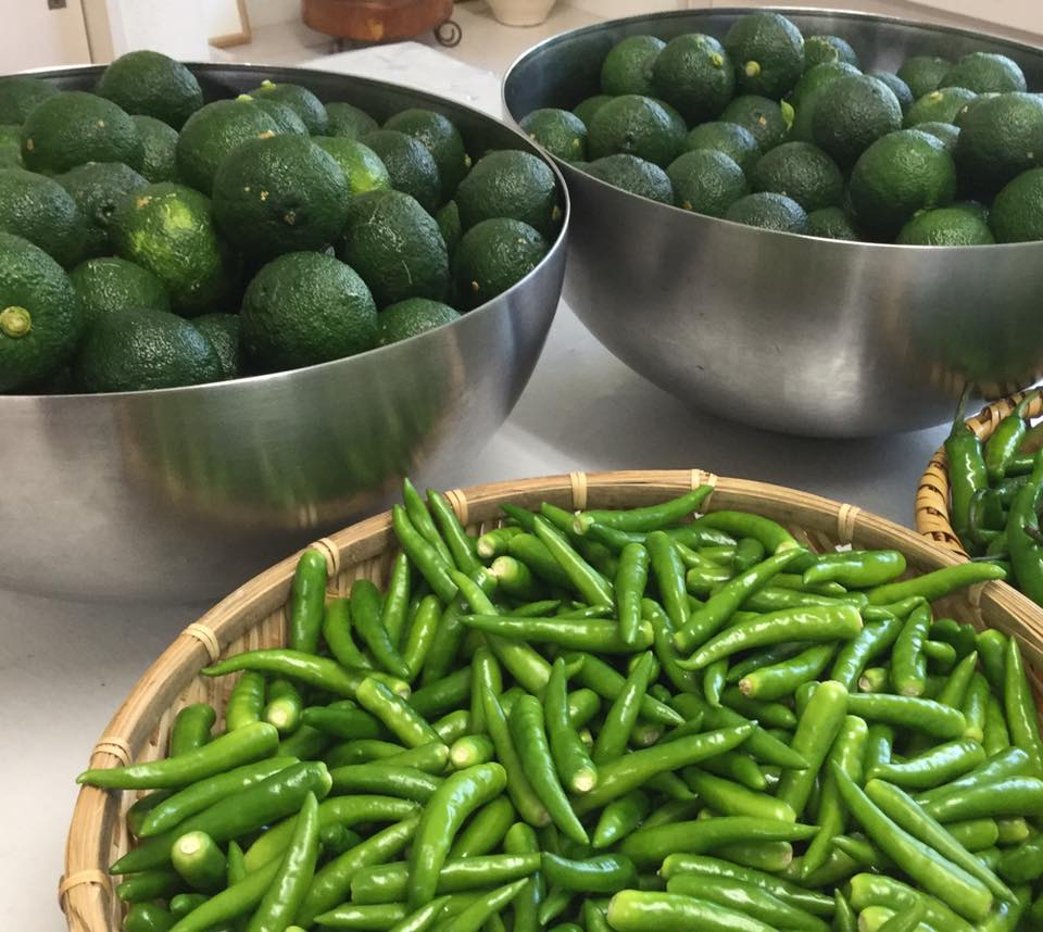 無農薬の青柚子で「柚子胡椒を作ろう」&柚子胡椒を使ったお料理