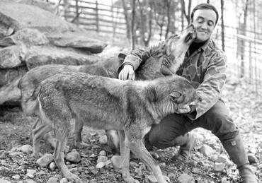 Félix y los lobos