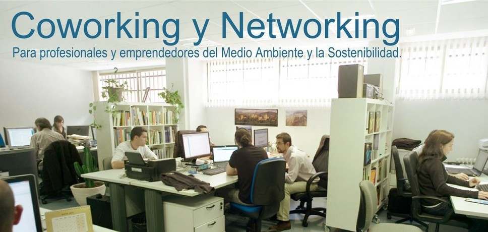 Coworking y Networking