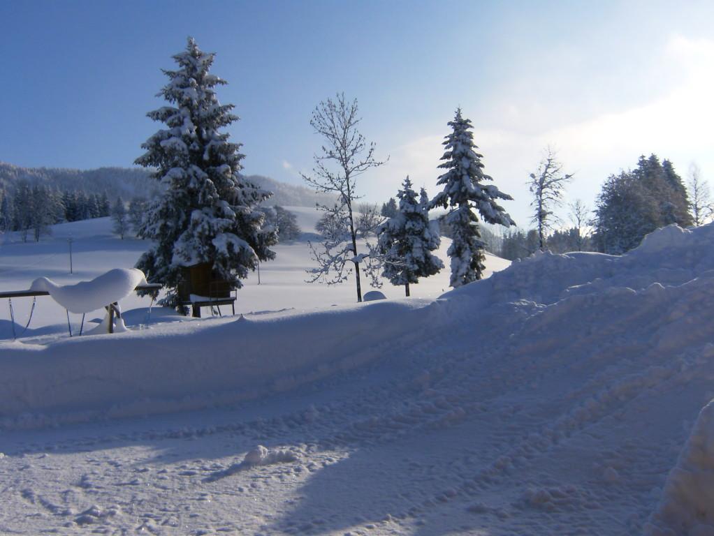 Biohof Haus Wieser, Abtenau, Salzburg Land, Winterlandschaft