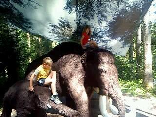 Erlebe das entstehen unserer Landschaft, der Tiere und der Menschen im Urzeitwaldpark Gosau