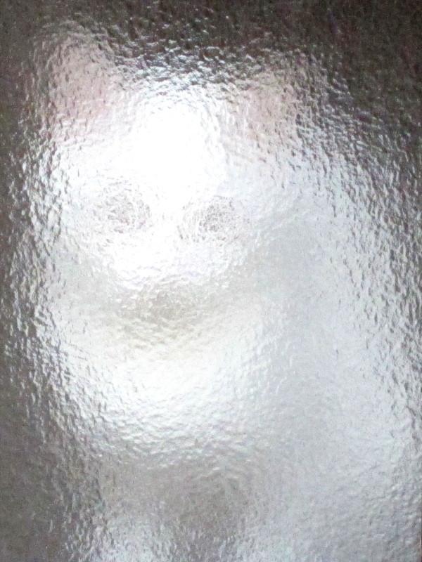 ガラスの向こう側から見たフクちゃん
