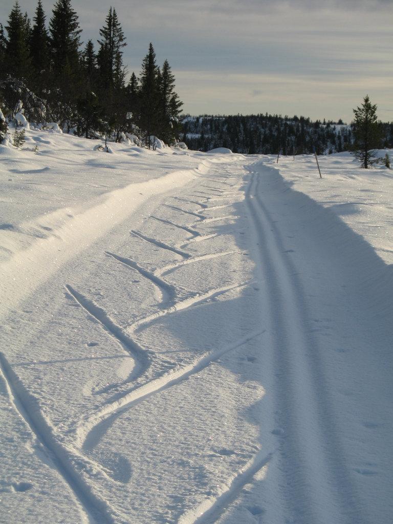 Ski Tracks, Gålå, Norway