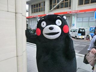 Original Kumamon from Kumamoto city