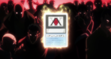 Hunter licence card Source: Hunter x Hunter Wiki