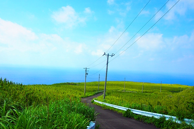 Nature on Aogashima island Source: Gurunavi