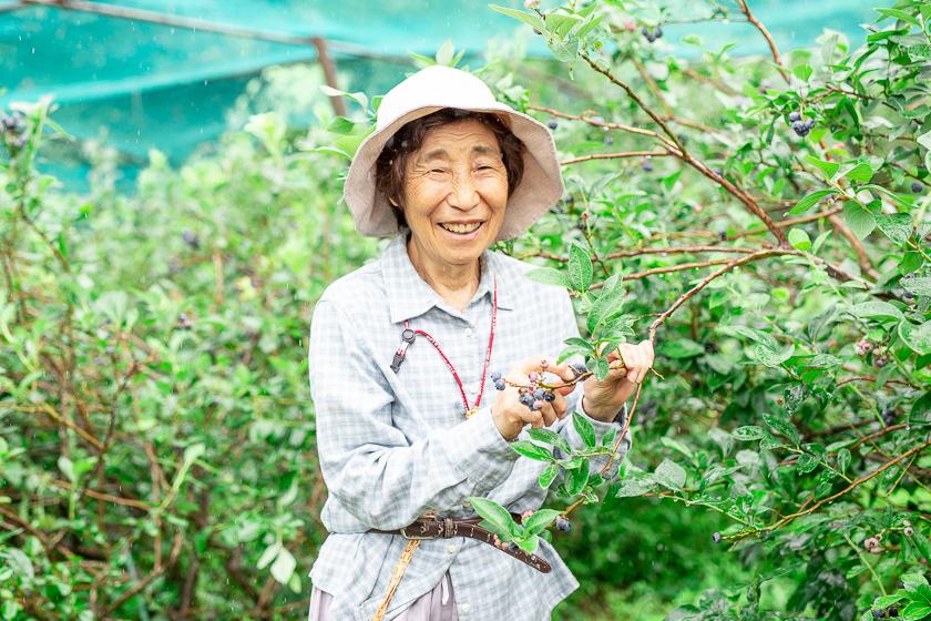 ブルーベリーの収穫に忙しい矢郷さん