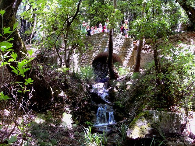 Wandern im Zauberwald