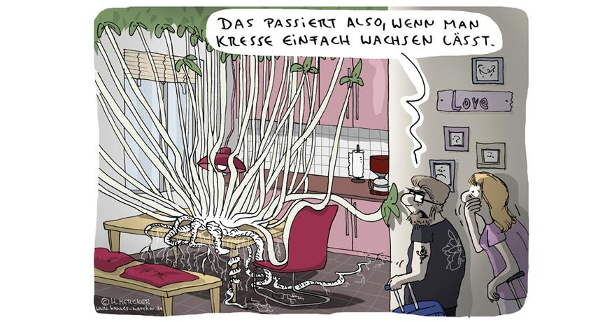 Cartoon von H. Mercker über ungeschnittene Schnittblumen in der Küche.