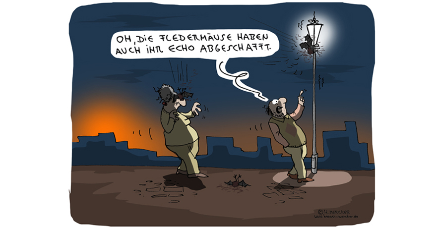 H. Mercker Cartoon: Echos.