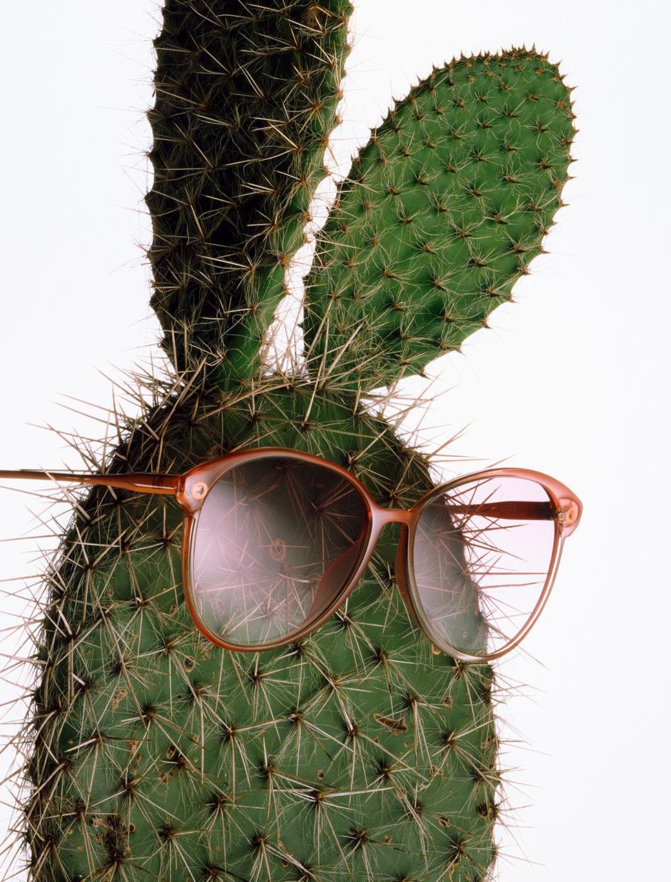 Bunny, 1985