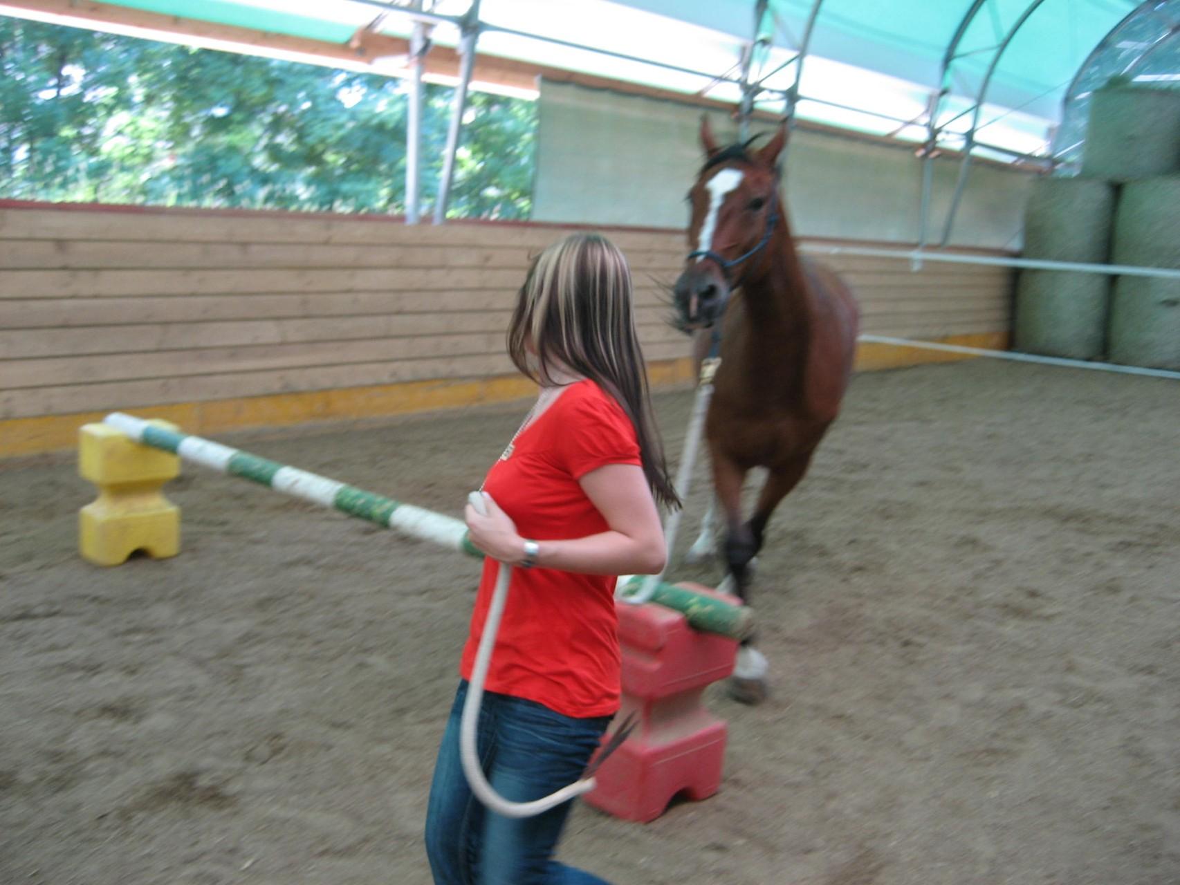 Lernen in Bewegung - spielen leicht - exterm wirksam und nachhaltig