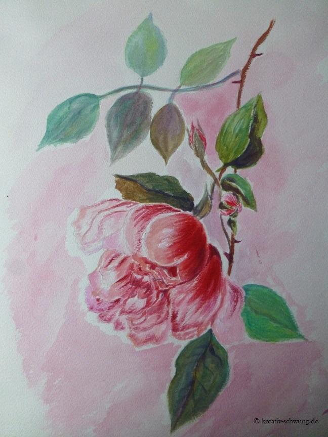 pinke Rose hängend
