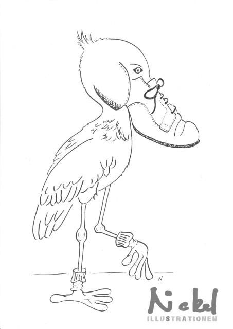 Schuhschnabel