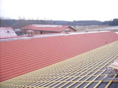 Dachfläche Rinderstall