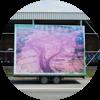 Freie Flusszone Süderelbe – Künstlerische Praxis