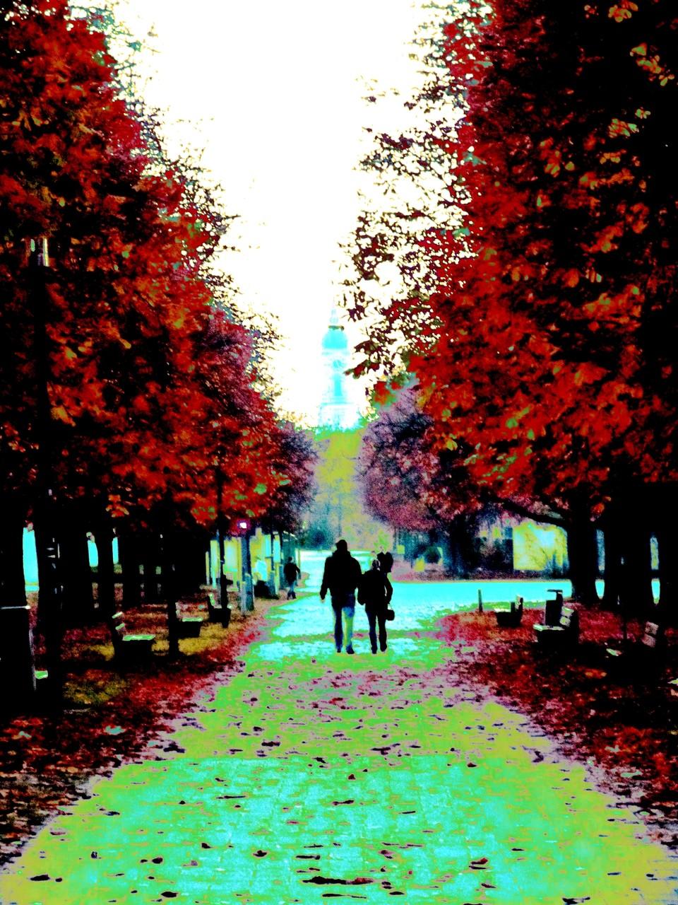 Herbstspaziergang # Fotografie