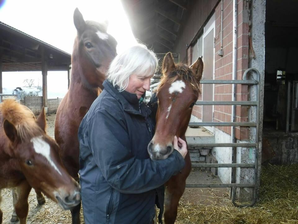 Dorothe Pfaff:   Abschied von  Hombeline  Herbst 2017