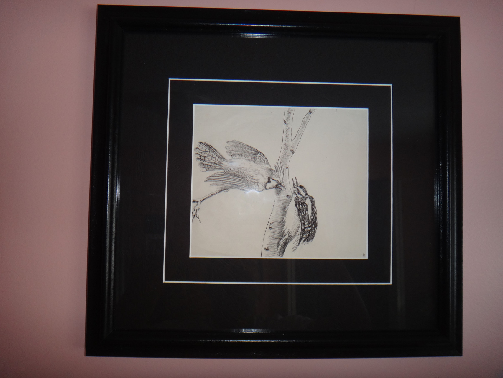 Framed original sketch by Louise de Kiriline Lawrence
