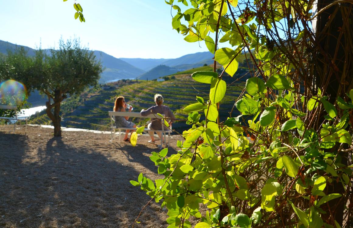 degustation-vin-vallée-du-douro-pinhao-portugal