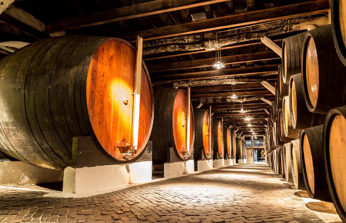 wine-cellar-visit-porto-gaia