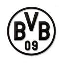 Borussia Dortmund Kurtz Detektei Dortmund