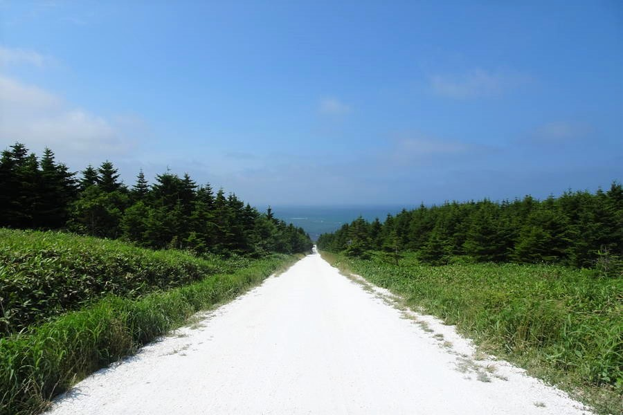 白い道 ホタテの貝殻を敷き詰めた道が宗谷丘陵に映える【北海道観光スポット】