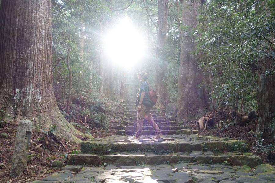 大門坂~熊野那智大社・那智の滝|片道30分のお試し熊野古道体験【和歌山観光スポット】