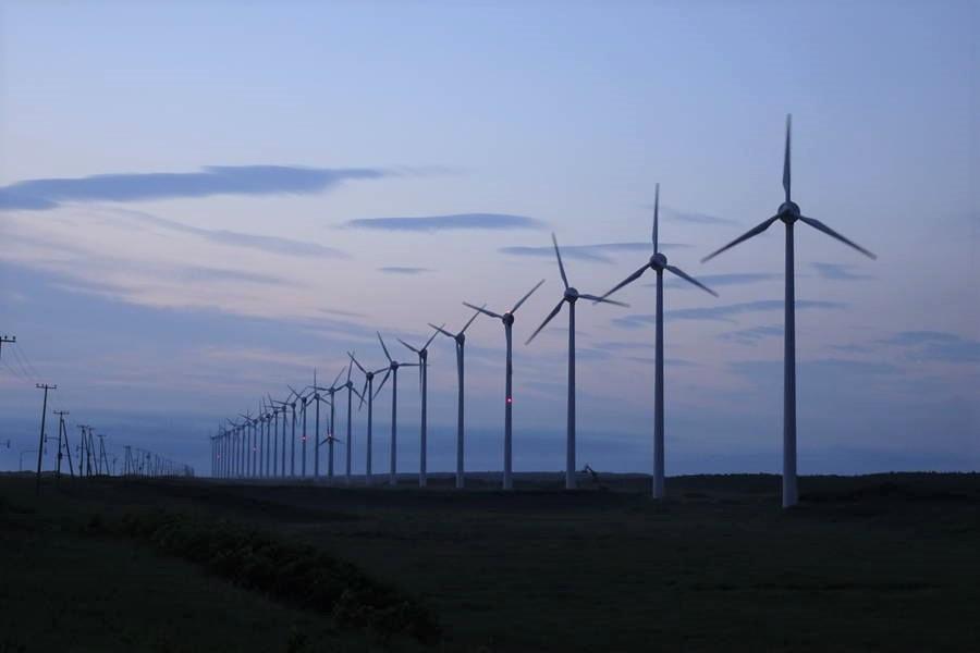幌延観光はトナカイ牧場・オトンルイ風力発電所・サロベツ原野展望塔へGO!【北海道観光スポット】