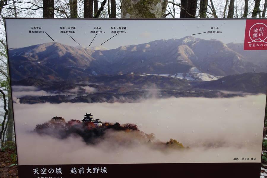 桜の越前大野城と雲海で天空の城撮影に挑む【福井観光スポット】