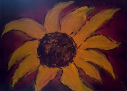 Sonnenblume (Ulli)