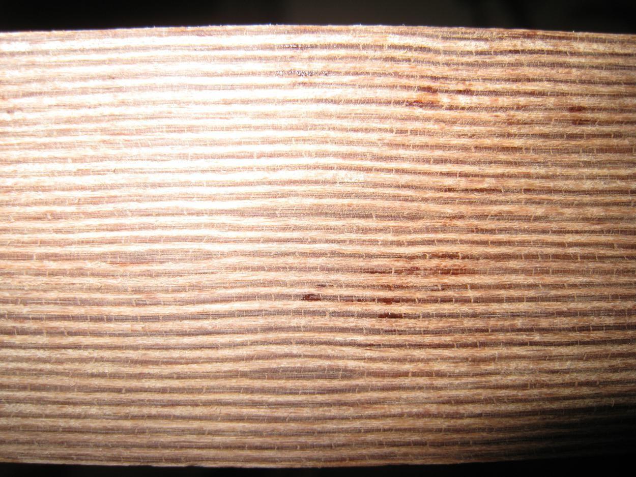 Panzerschichtholz  Delignit  Rohdichte 1,35 - 1,4 kg/ dm³