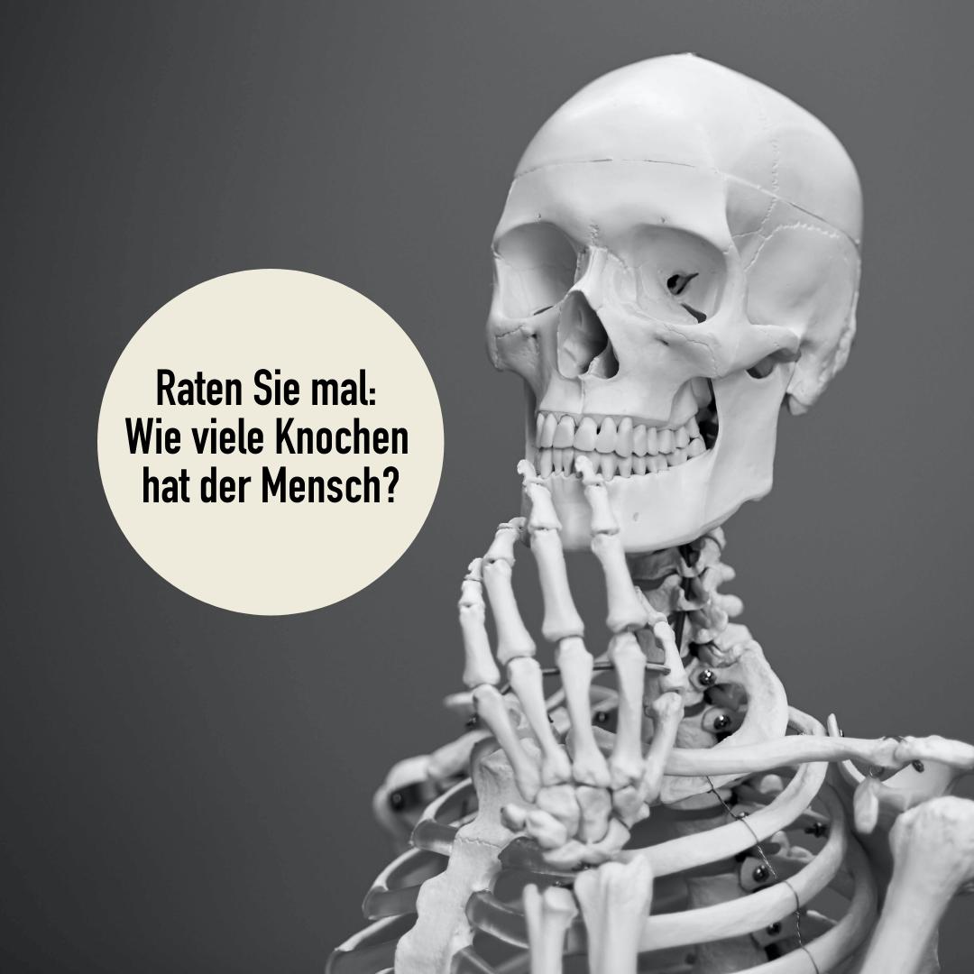 Physiotherapie Wellsana möchte gerne von Ihnen wissen:  Wieviele Knochen hat der Mensch eigentlich?