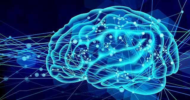 脳の可能性を開くマインドマップ