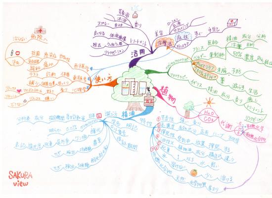 マインドマップ (作: 真田 千奈美 さん)