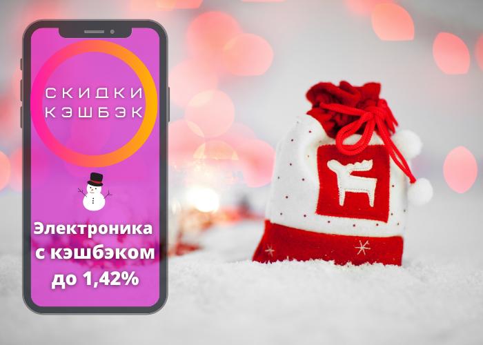 Что россияне покупали в интернете в новогодние праздники?